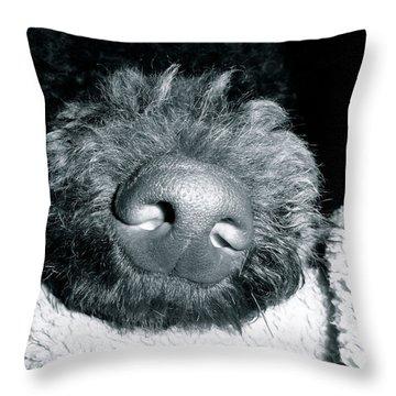Bodhi Nose Throw Pillow