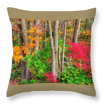 Pa Country Roads - Autumn Flourish - Harmony Hill Nature Area - Chester County Pa Throw Pillow