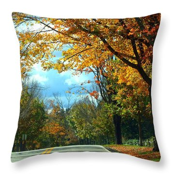 Pa Mountains Throw Pillow