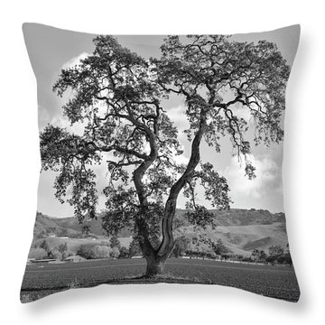Pacheco Pass Throw Pillow