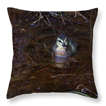 Throw Pillow featuring the photograph Pacific Black Duckling by Miroslava Jurcik