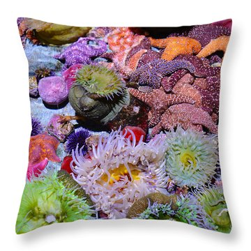 Pacific Ocean Reef Throw Pillow by Kyle Hanson