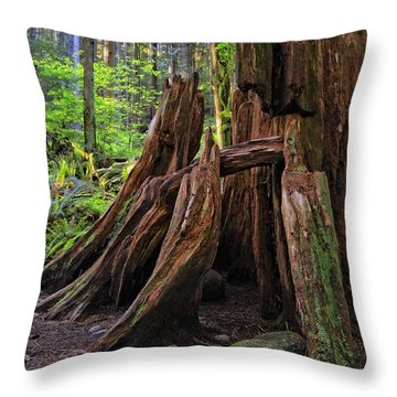 Pacific Rainforest Old And New Throw Pillow by Charline Xia