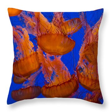 Pacific Sea Nettle Cluster 1 Throw Pillow