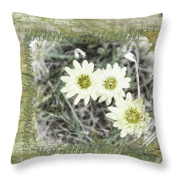 Package Of Three Throw Pillow by Nadine Berg