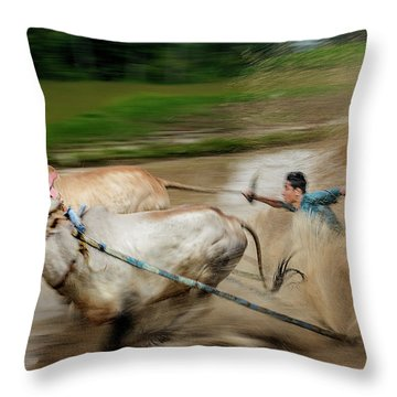 Throw Pillow featuring the photograph Pacu Jawi Bull Race Festival by Pradeep Raja Prints