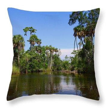 Paddling Otter Creek Throw Pillow