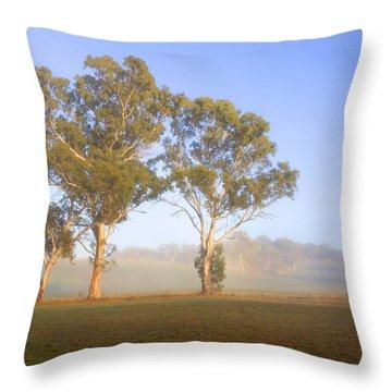 Paddock Sunrise Throw Pillow by Mike  Dawson