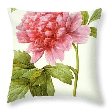 Paeonia Suffruticosa Throw Pillow