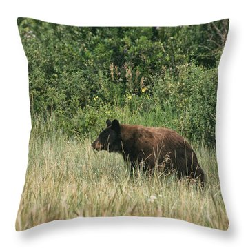 Pagosa Momma Bear Throw Pillow