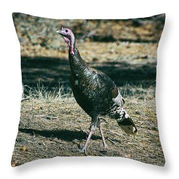 Pagosa Wild Turkey Throw Pillow