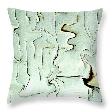 Throw Pillow featuring the photograph Paint Abstraction 2 by Mary Bedy