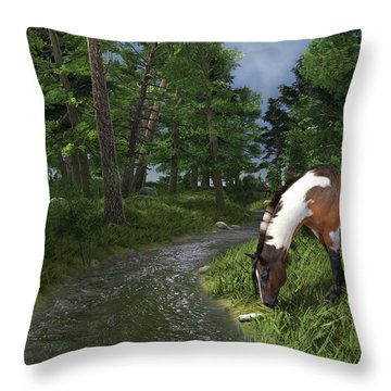 Paint Horse By The Forest Stream Throw Pillow