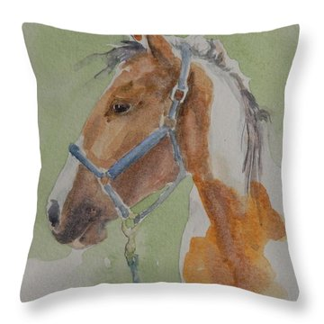 Paint I Throw Pillow by Gretchen Bjornson