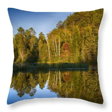 Paint River Throw Pillow