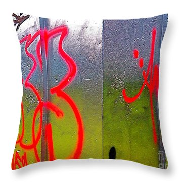 Paint Shed Throw Pillow