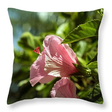 Paint The Town Pink Throw Pillow by Nance Larson
