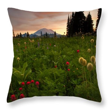 Paintbrush Sunset Throw Pillow
