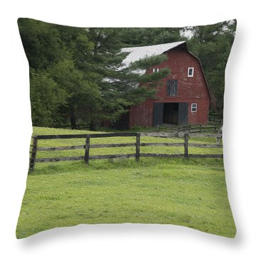Painted Barn With Horses Throw Pillow by Will Burlingham