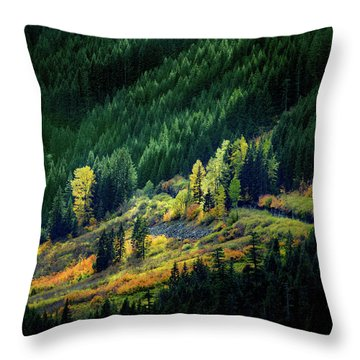 Throw Pillow featuring the photograph Painted By A Sunbeam by Mary Jo Allen