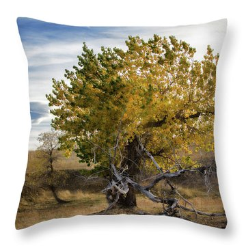 Painted By Nature Throw Pillow by Alana Thrower