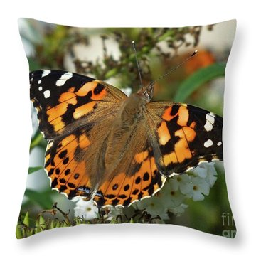 Painted By Nature - Painted Lady Throw Pillow