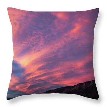 painted by Sun Throw Pillow
