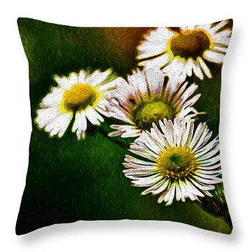 Painted Daiseys  Throw Pillow