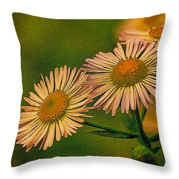 Painted Daisies 2 Throw Pillow