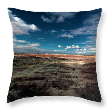 Throw Pillow featuring the photograph Painted Desert by Charles Ables