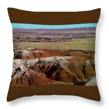 Painted Desert In Arizona Throw Pillow by Ruth  Housley