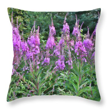 Painted Fireweed Throw Pillow