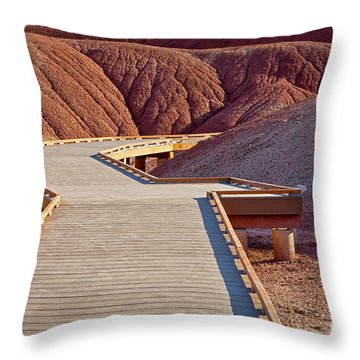Painted Hills Boardwalk Throw Pillow by Jerry Fornarotto