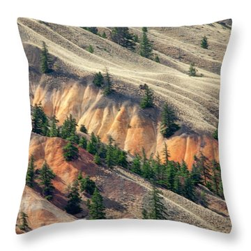 Painted Hills Throw Pillow
