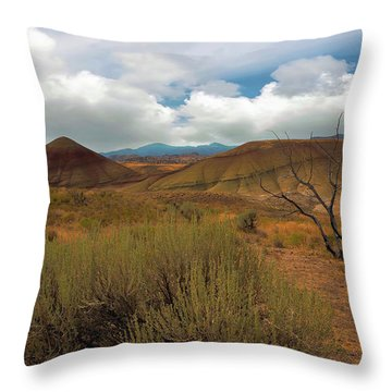 Painted Hills Landscape In Central Oregon Throw Pillow