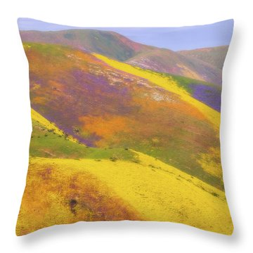 Throw Pillow featuring the photograph Painted Hills by Marc Crumpler