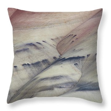 Painted Hills Textures 2 Throw Pillow by Leland D Howard