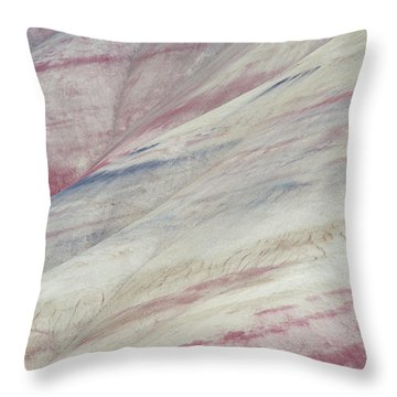 Painted Hills Textures 3 Throw Pillow by Leland D Howard