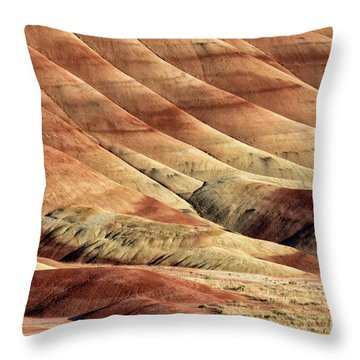 Painted Hills Textures Throw Pillow by Jerry Fornarotto