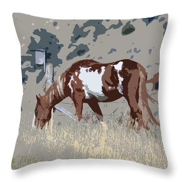 Throw Pillow featuring the photograph Painted Horse by Steve McKinzie