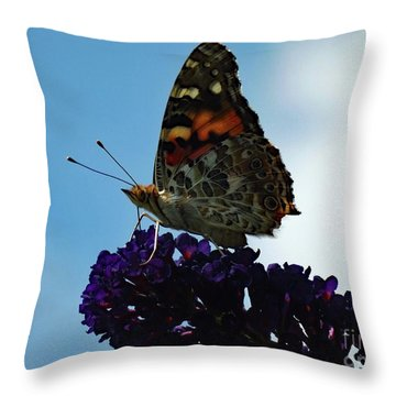 Painted Lady Beauty Revealed Throw Pillow