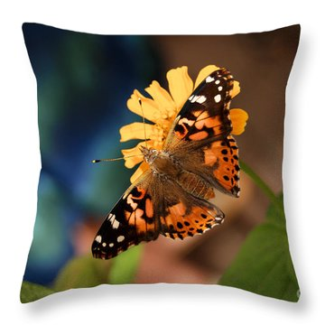 Throw Pillow featuring the photograph Painted Lady Butterfly by Eva Kaufman