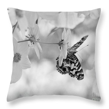 Throw Pillow featuring the photograph Painted Lady In Black And White by Lila Fisher-Wenzel