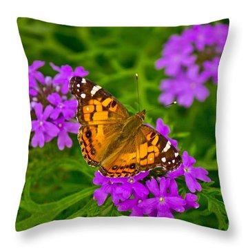Painted Lady On Purple Verbena Throw Pillow