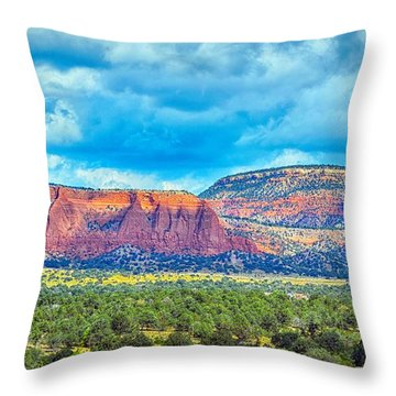 Throw Pillow featuring the photograph Painted New Mexico by AJ Schibig