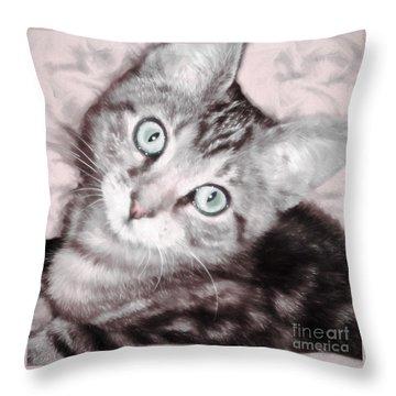 Pastel Bengal Kitten Throw Pillow