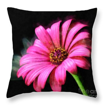 Painted Pink Throw Pillow