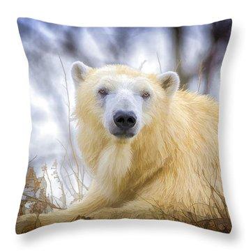 Painted Polar Bear  Throw Pillow by LeeAnn McLaneGoetz McLaneGoetzStudioLLCcom