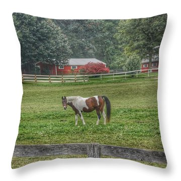 1005 - Painted Pony In Pasture Throw Pillow