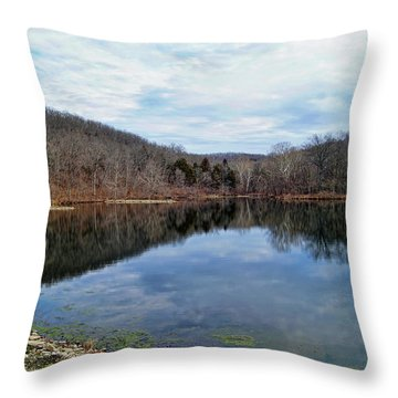 Throw Pillow featuring the photograph Painted Rock Conservation Area by Cricket Hackmann